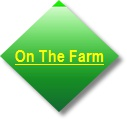 The Farm Page Button